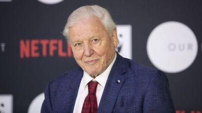 Sir David Attenborough új természetfilmmel jelentkezik