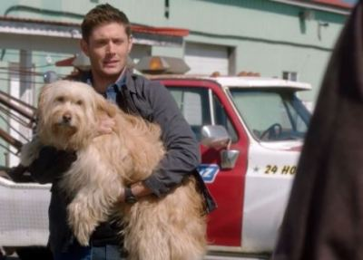 Supernatural S15E19 – Inherit the Earth