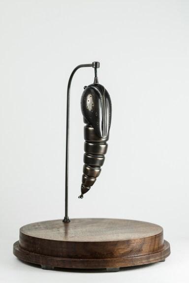 bronze-pupa_Lres