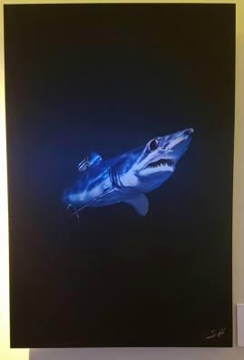 Oris-Tiburones-1