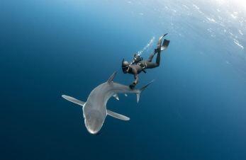 Ulysse-Nardin-Diver-Deep-Dive-Fred-Buyle-4