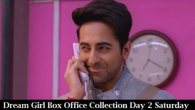 Photo of Dream Girl Box Office Collection Day 2 Saturday