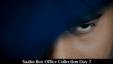 Saaho Box Office Collection Day 7