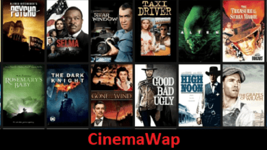 Photo of CinemaWap – Download Latest Bollywood, Hollywood & Hindi Dubbed Movies From CinemaWap.net
