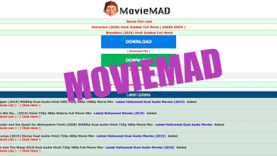 Photo of Moviemad 2021 – Download Latest Bollywood & Hollywood Movies In HD