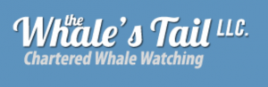 whales-tail-logo