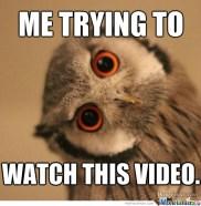 trying-to-watch-sideways-video_o_2390035