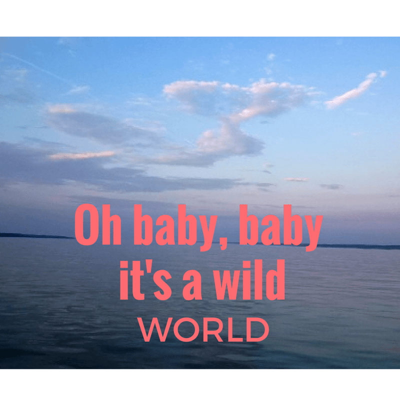 Oh baby, baby  it's a wild