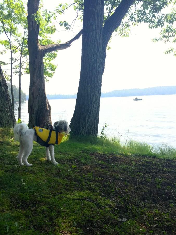 Paisley lake