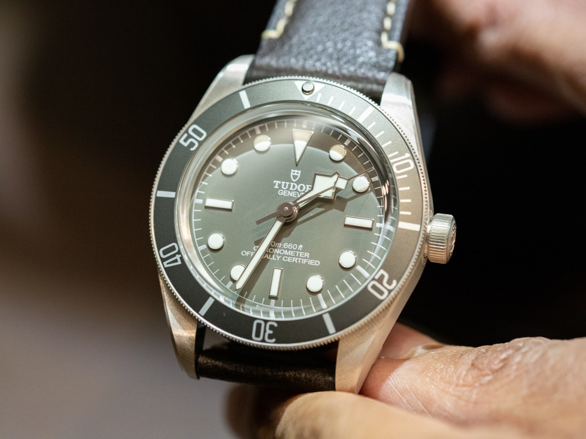 Tudor Black Bay Fifty Eight 925 Taupe Dial 14