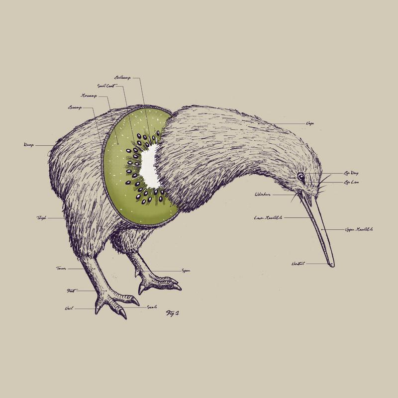 Vanavond eten we kiwi