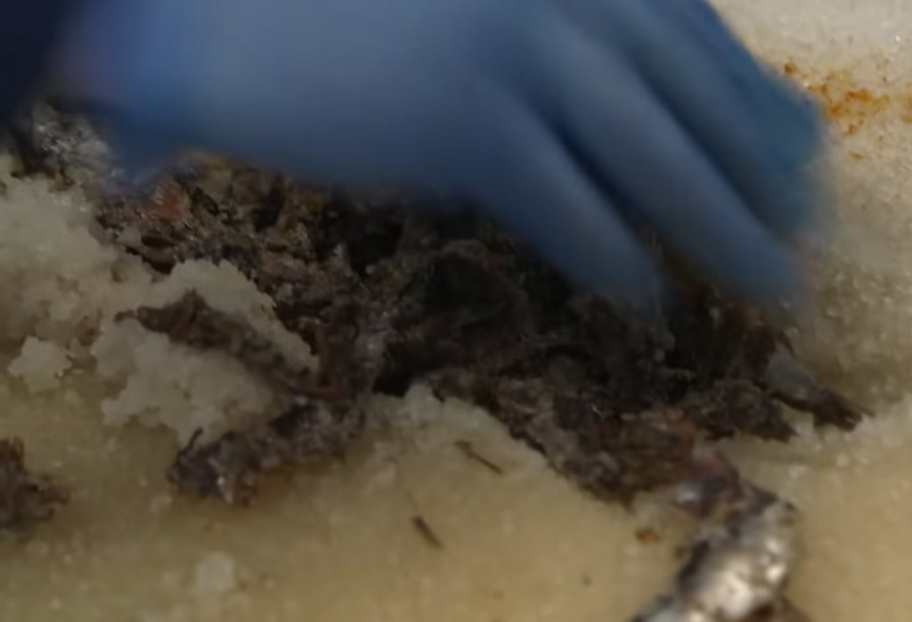 Filmpje. Worcestershire sauce, how it's made