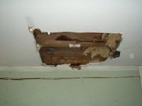 WATER DAMAGE CEILING REPAIR  Ceiling Systems