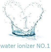 vesta H2 water ionizer no1