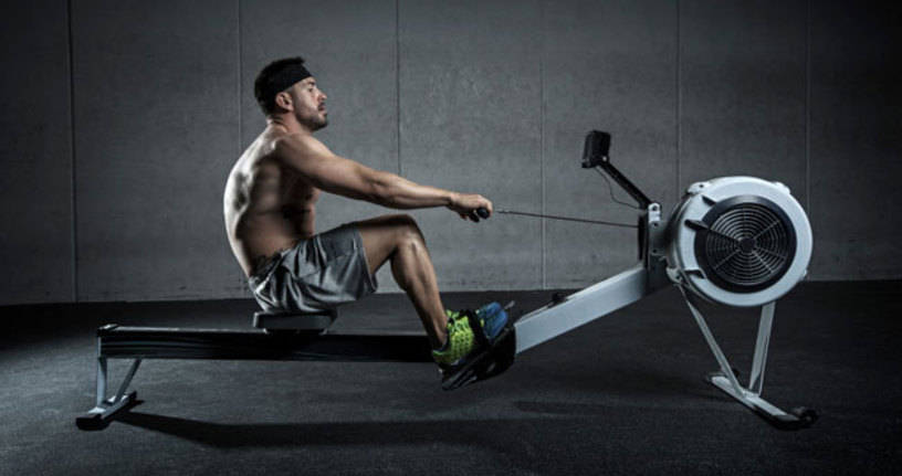 what muscles does a rowing machine work?