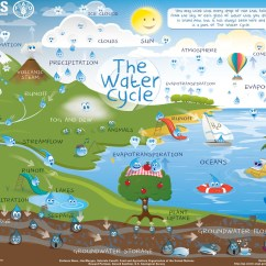 Water Cycle Diagram With Explanation 2007 Ford Ranger Wiring The For Schools And Students