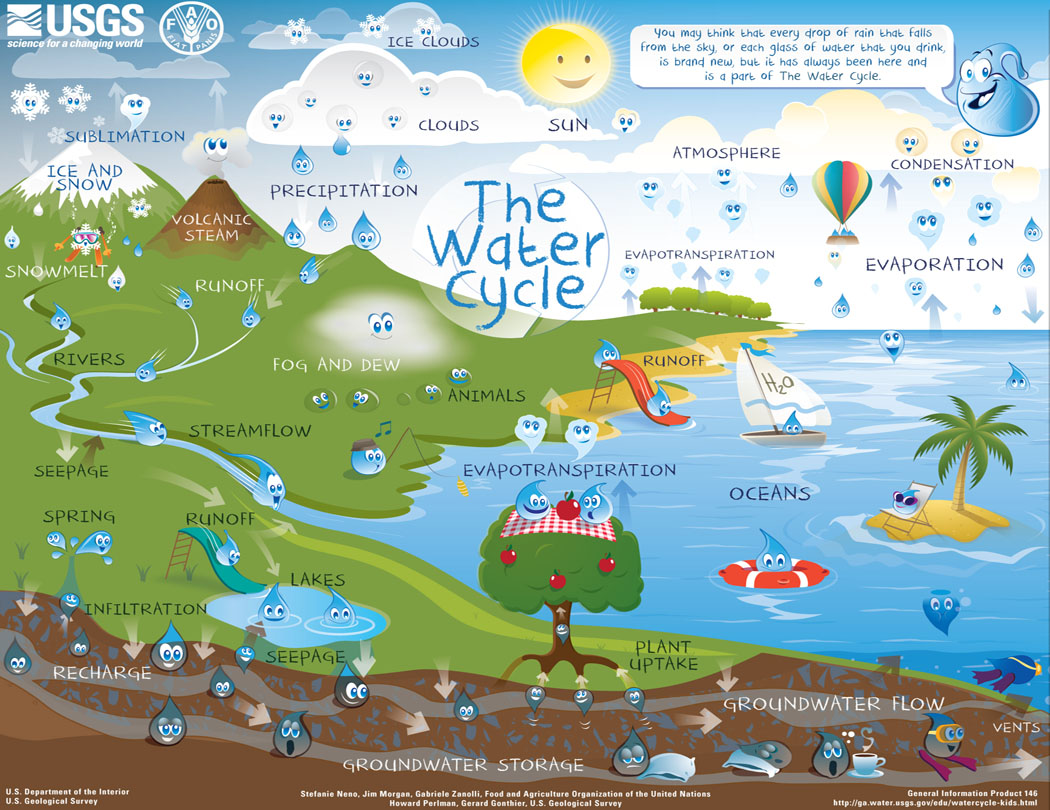 hight resolution of back to the water cycle diagram for students water cyle for kids