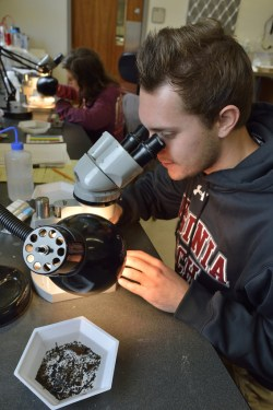 Kyle on the dissecting scope in the lab