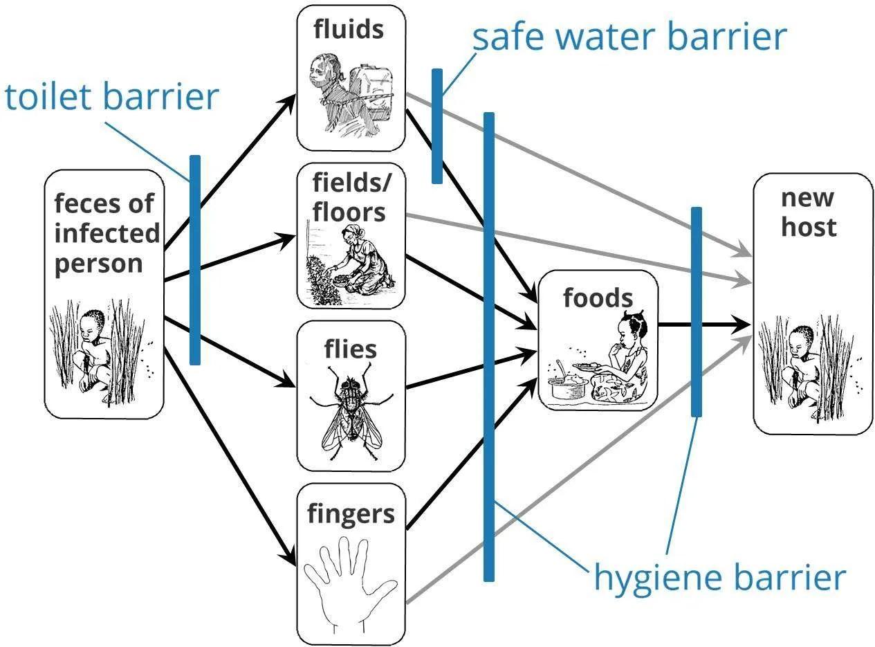 F Diagram Water1st International