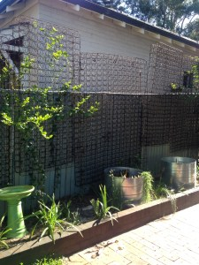 Vertical garden made out of mattress inner springs