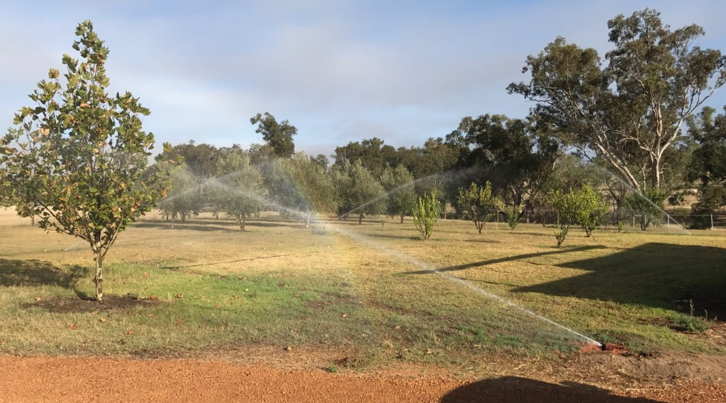 4,000 square metre reticulation job in Upper Swan