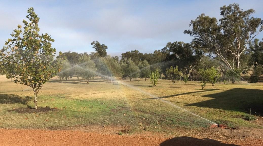4,000 square metre reticulation job in Upper Swan