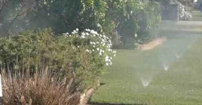 Watering garden with Water Bore