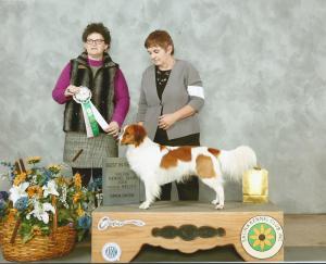 Luke is a Canine Good Citizen