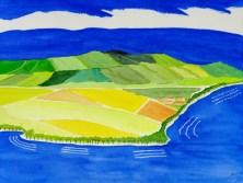 Albert L. Halff, Spring Fields, Kaua'i