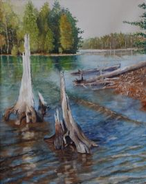 Steve Taylor, Weathered Stumps