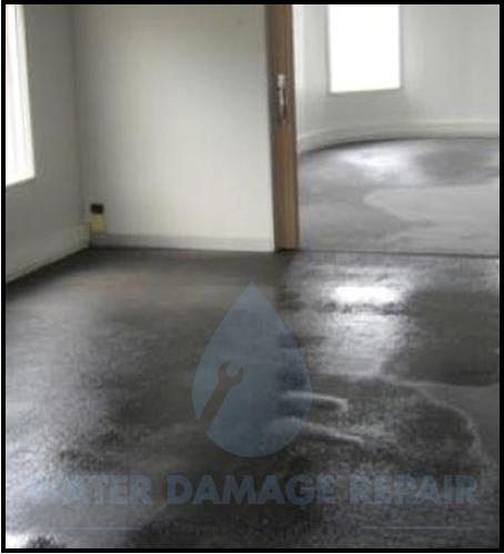 62 water damage repair cleanup phoenix restoration company 8