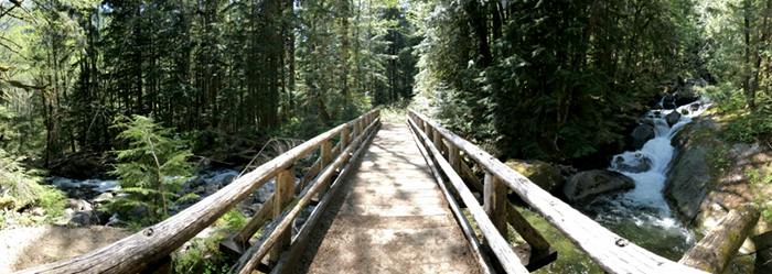 Footbridge Across Marten Creek