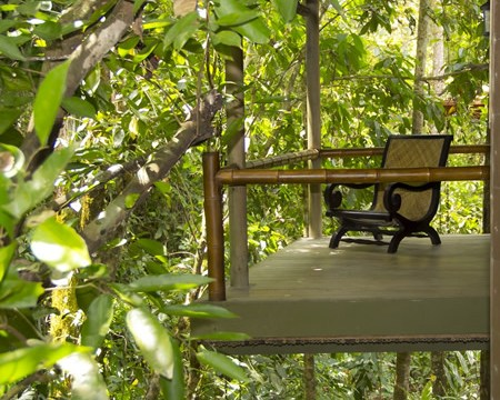Waterfall Villas in Costa Rica Mission and Vision Rain Forest and Waterfall Reserve