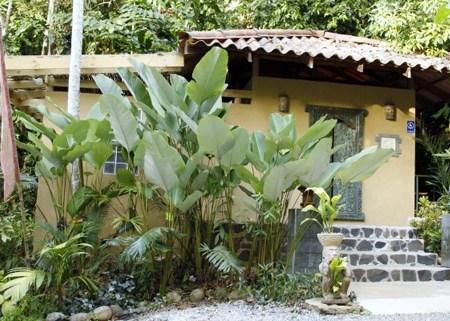 Spa Therapy in Costa Rica | Detox Lava Stone Therapy