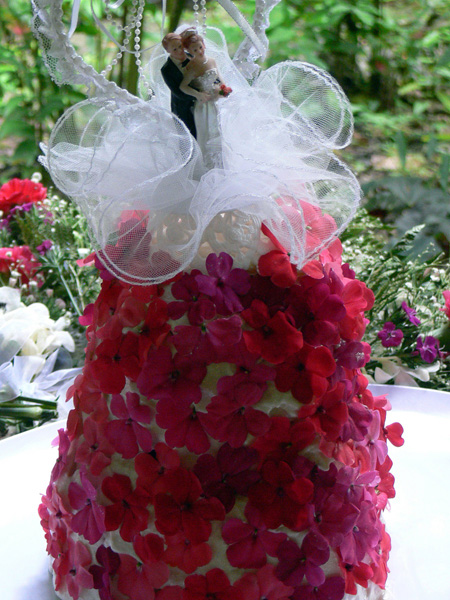 Exotic Waterfall Wedding Package