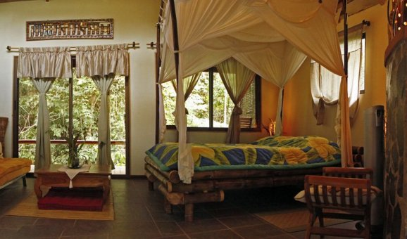 Dragonfly Suite I