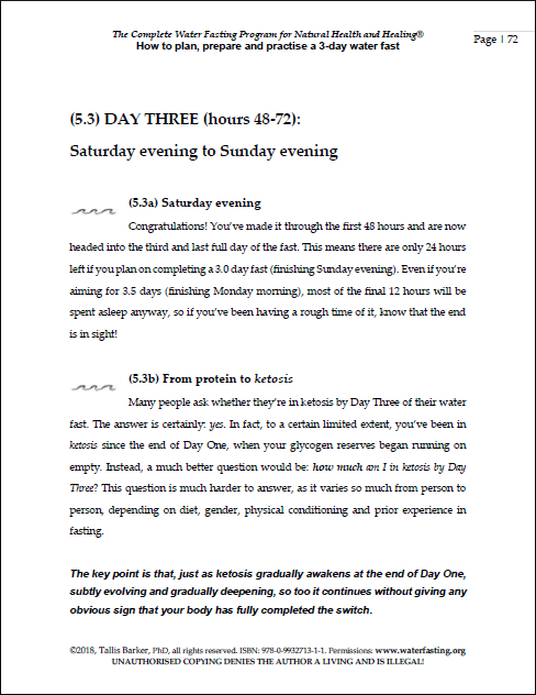 sample pages 3DAY PLAN 4