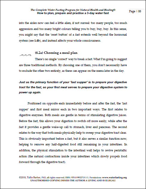 sample pages 3DAY PLAN 8