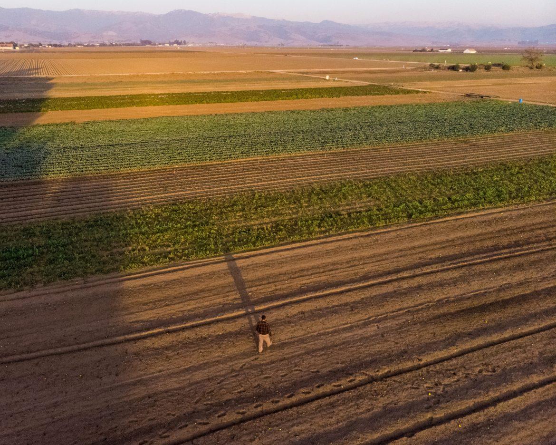 reequilibrio de la tierra agrícola y natural