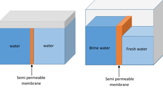 What Is A Reverse Osmosis System