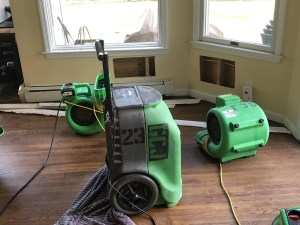Propefessional Clean Up Equipment