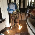 Residential Water Clean Up