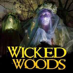 Spraoiwickedwoods