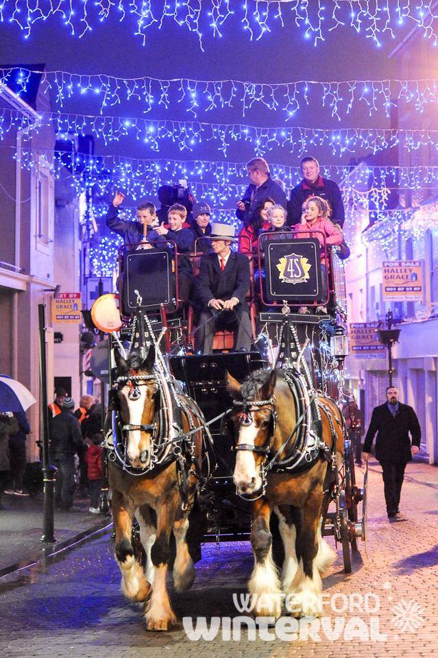 Waterford Winterval Horse