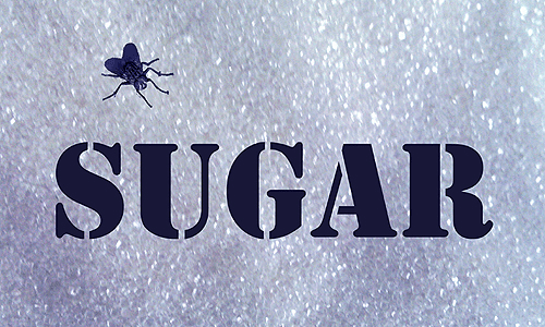 Sugar Pic small