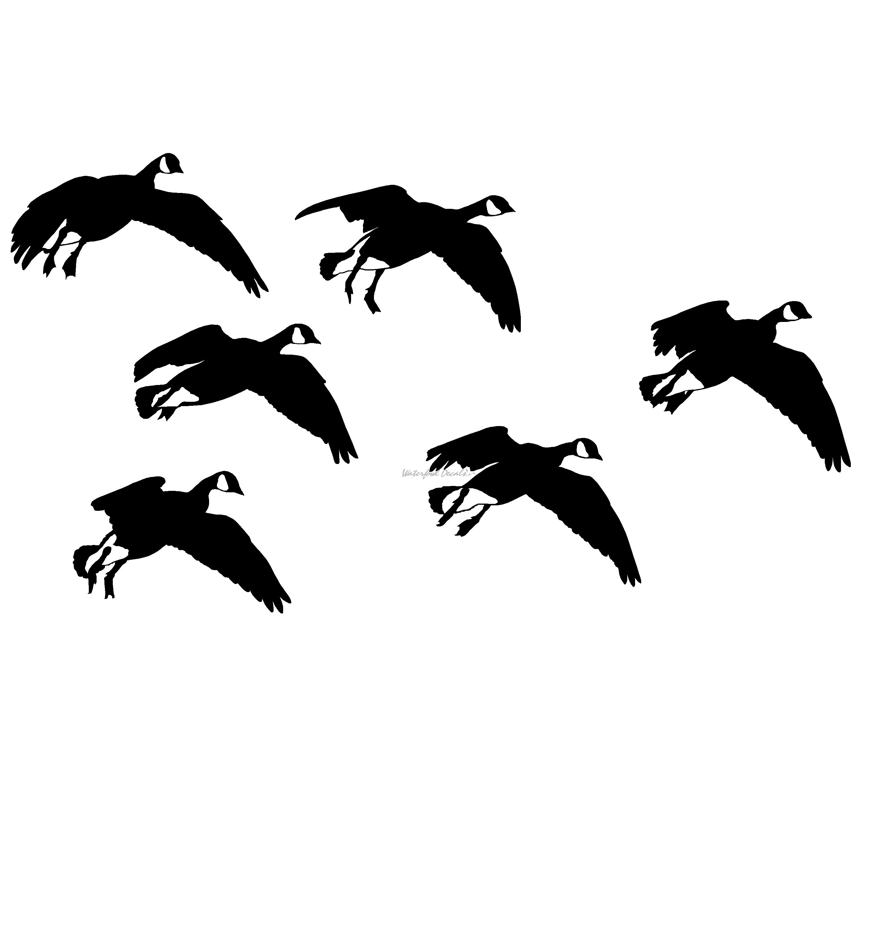 Canadian Geese Feet Down Hunting Decal
