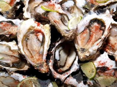 -_temp_emailAttachments_10752_4906_Oysters_P7061675