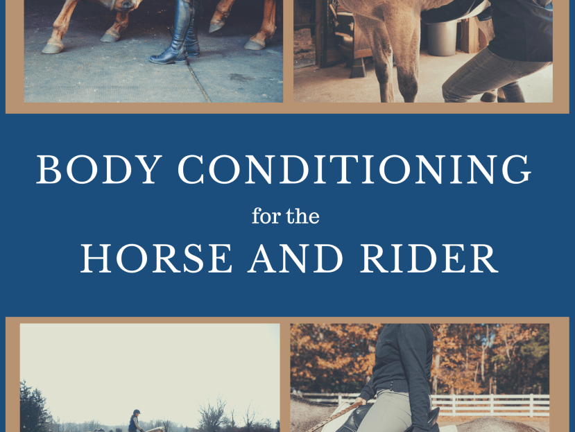 Body Conditioning for the Horse and Rider Book