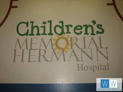2006 Hermann Memorial Hospital