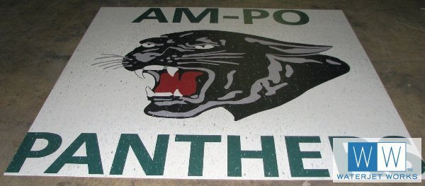 2010 Am Pro Panthers School Logo